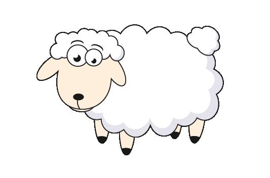 CreaBull_mouton-04