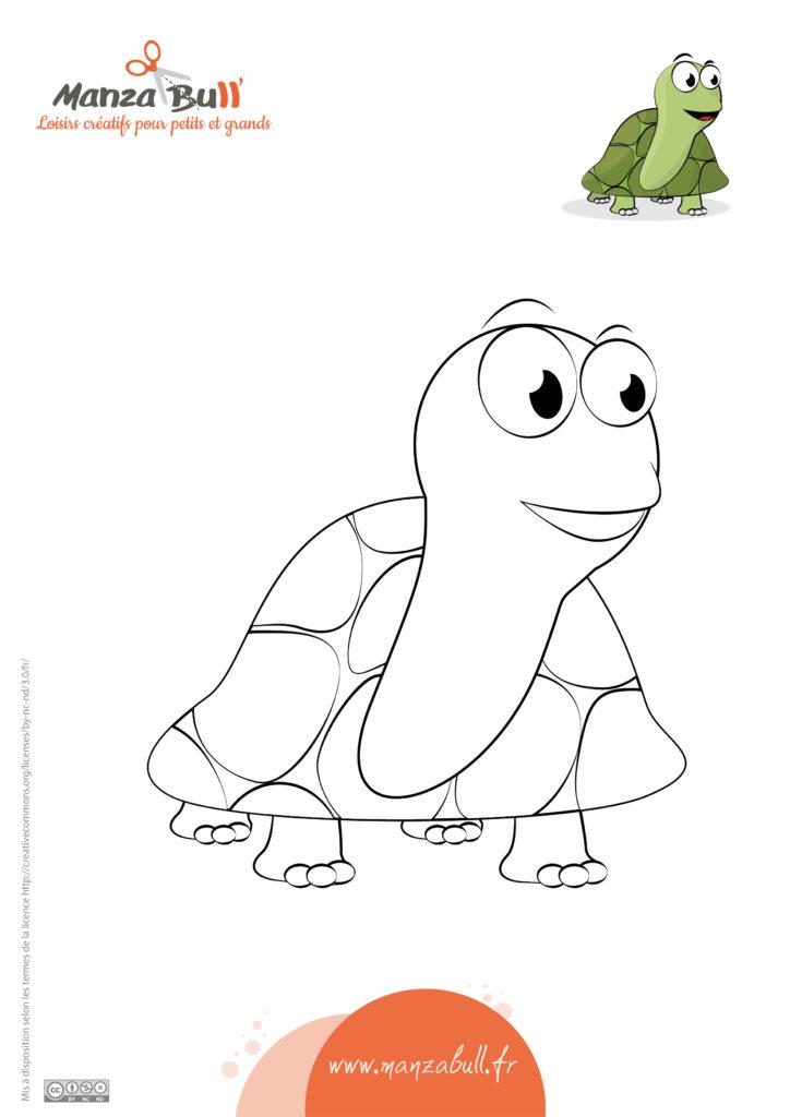 coloriage tortue à imprimer