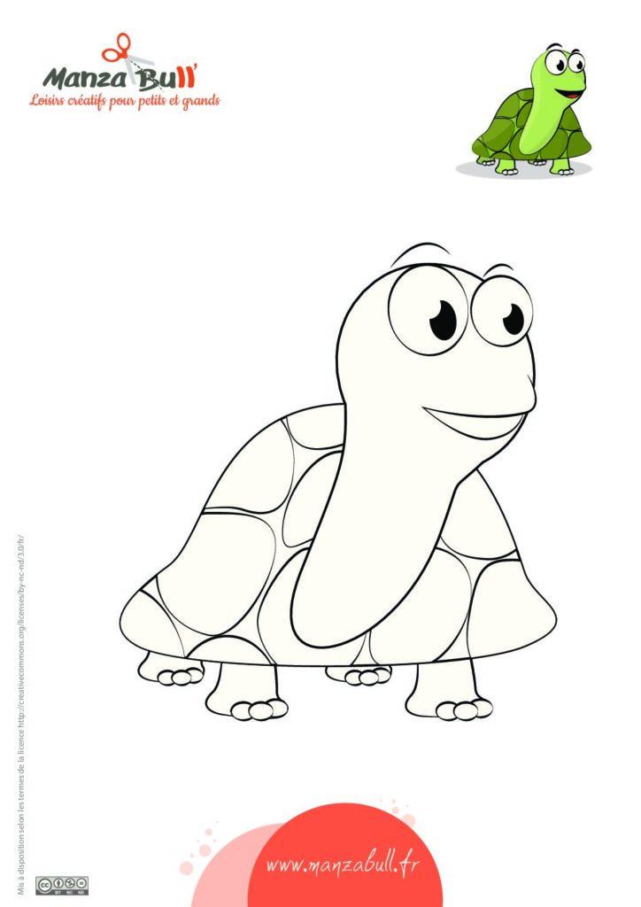 activités éducatives enfants : coloriage tortue