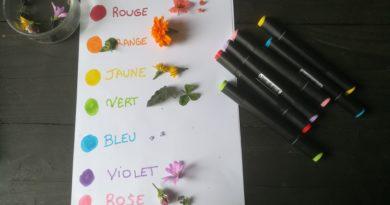 Apprendre les couleurs dans la nature