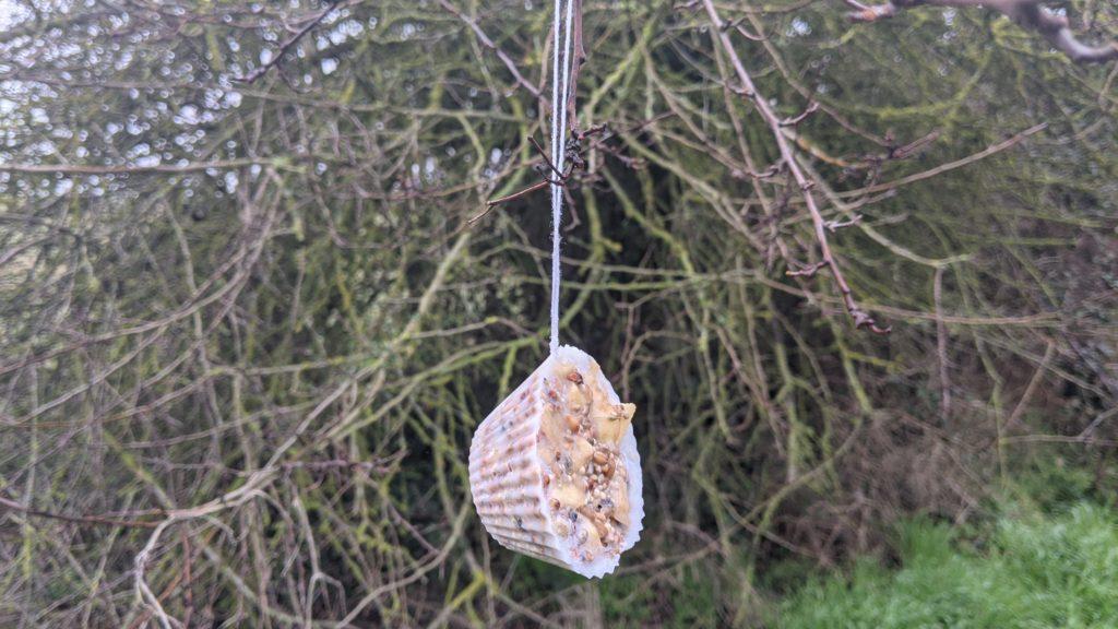 Fabriquer des boules de graisse pour les oiseaux