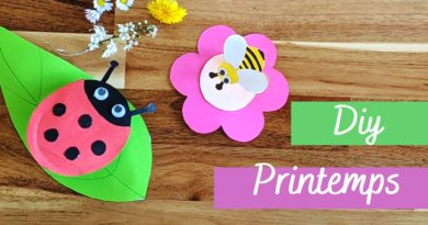 Activité manuelle de printemps : abeille et coccinelle 3D