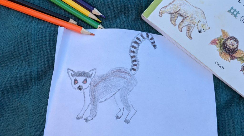 livre dessiner des animaux supermignons - test